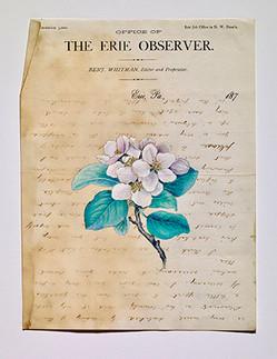 the erie observer.jpg