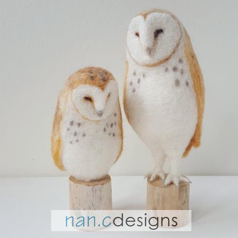 nan.c designs