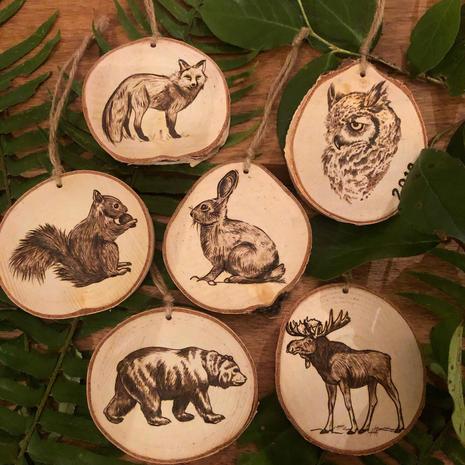 Wild Pine Design