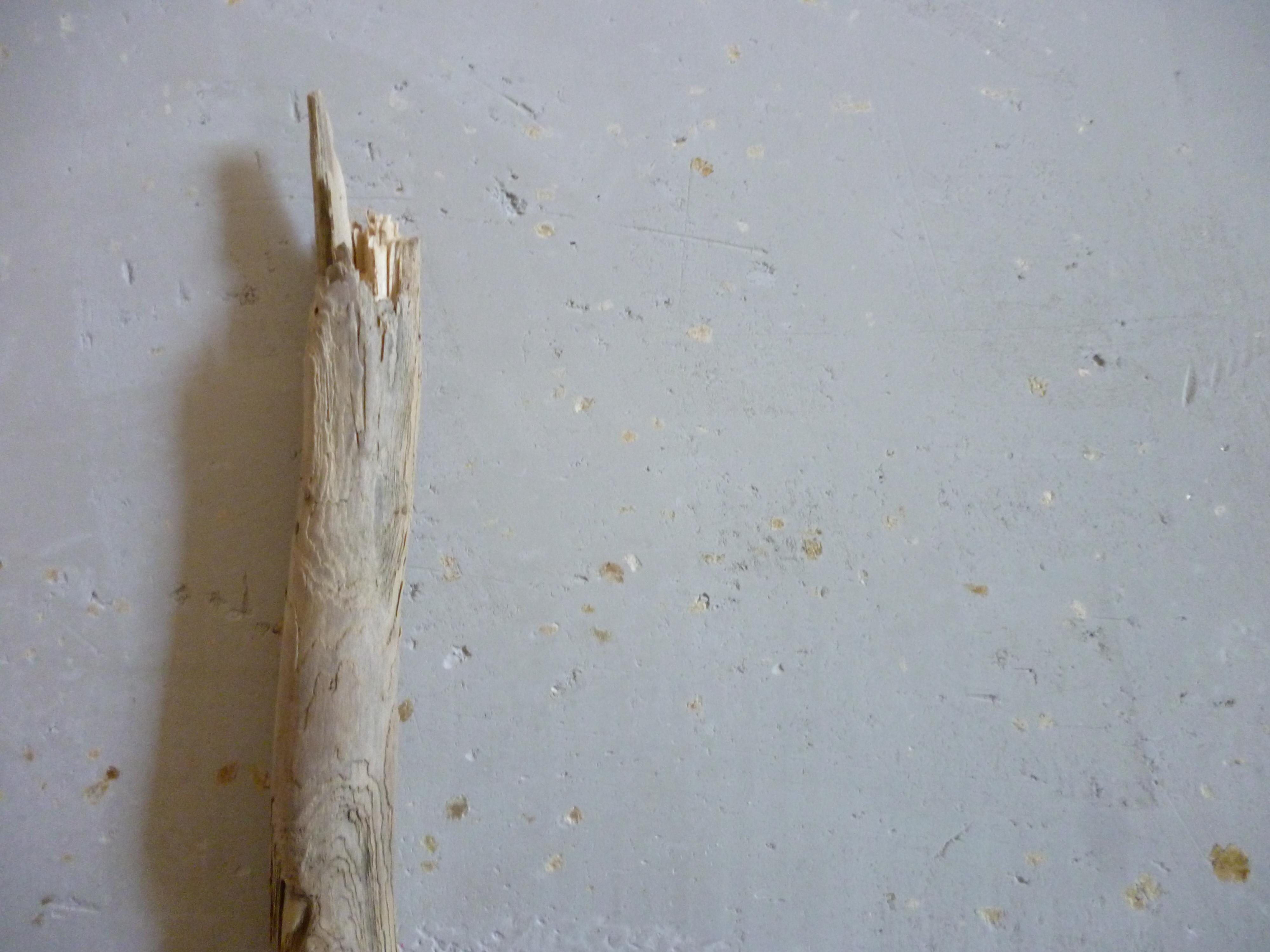Wand:Holz.JPG