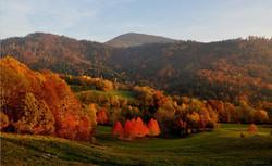 Le feu de l'automne