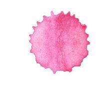 pinksplash_wix.jpg