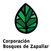 Corporación Bosques de Zapallar