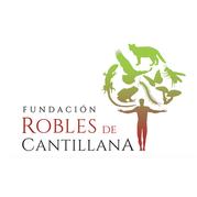 Fundación Robles de Cantillana