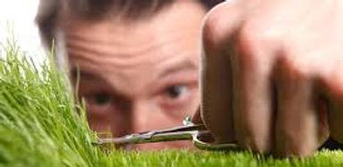 grass snip scissors.jpg