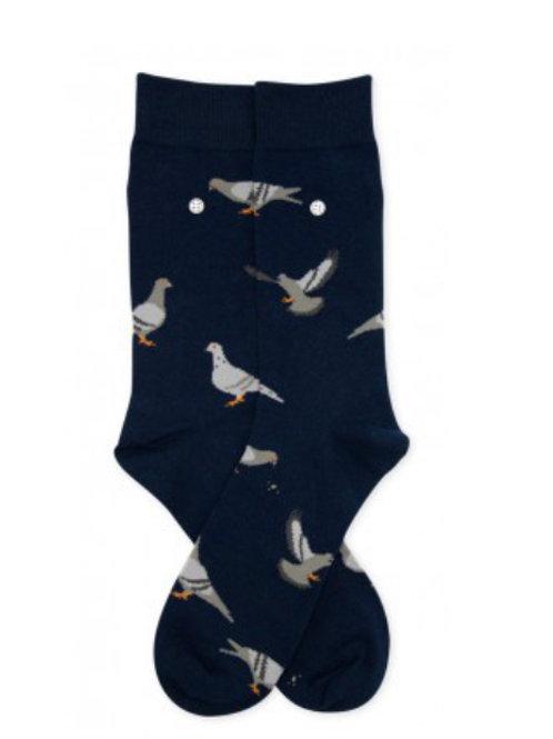 Pigeons ALFREDO GONZALES
