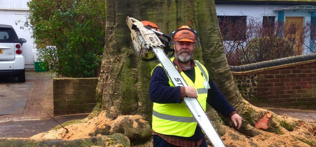 tree surgeon wearing hi vis and hard hat, holding a large wood cutter.jpg