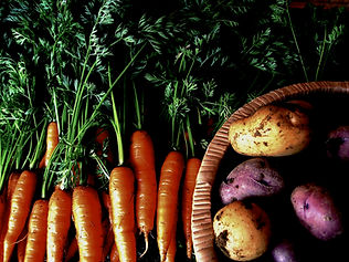 sandpoint fresh carrots and potatoes