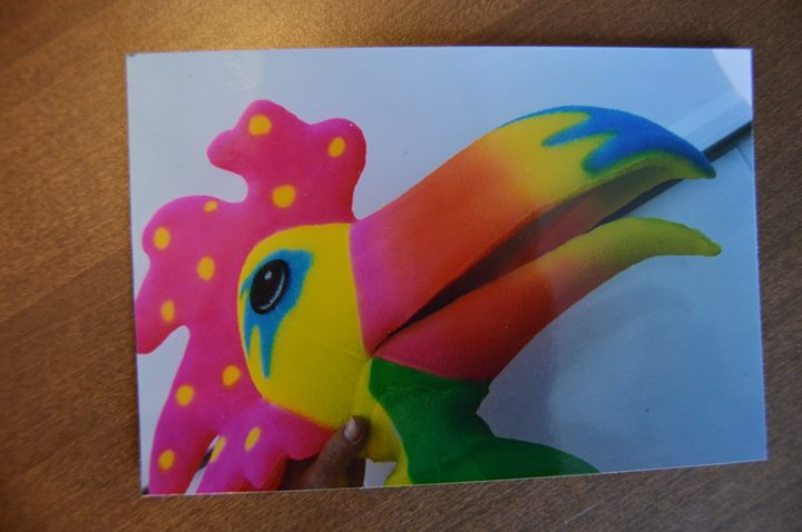 Errol Manoff toucan