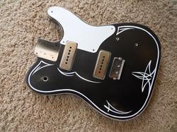 Peter Florence guitar