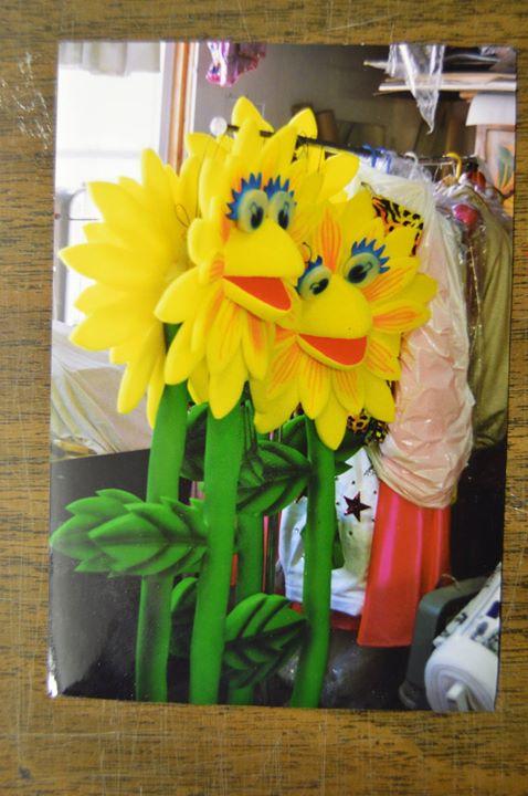 Erroll Manoff sunflowers