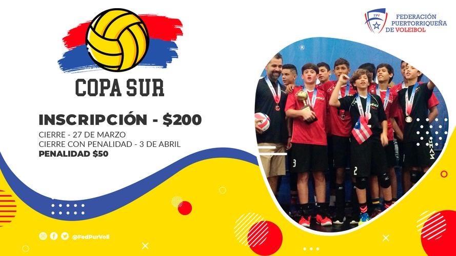 Copa Sur
