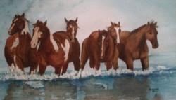 """Water paints"""