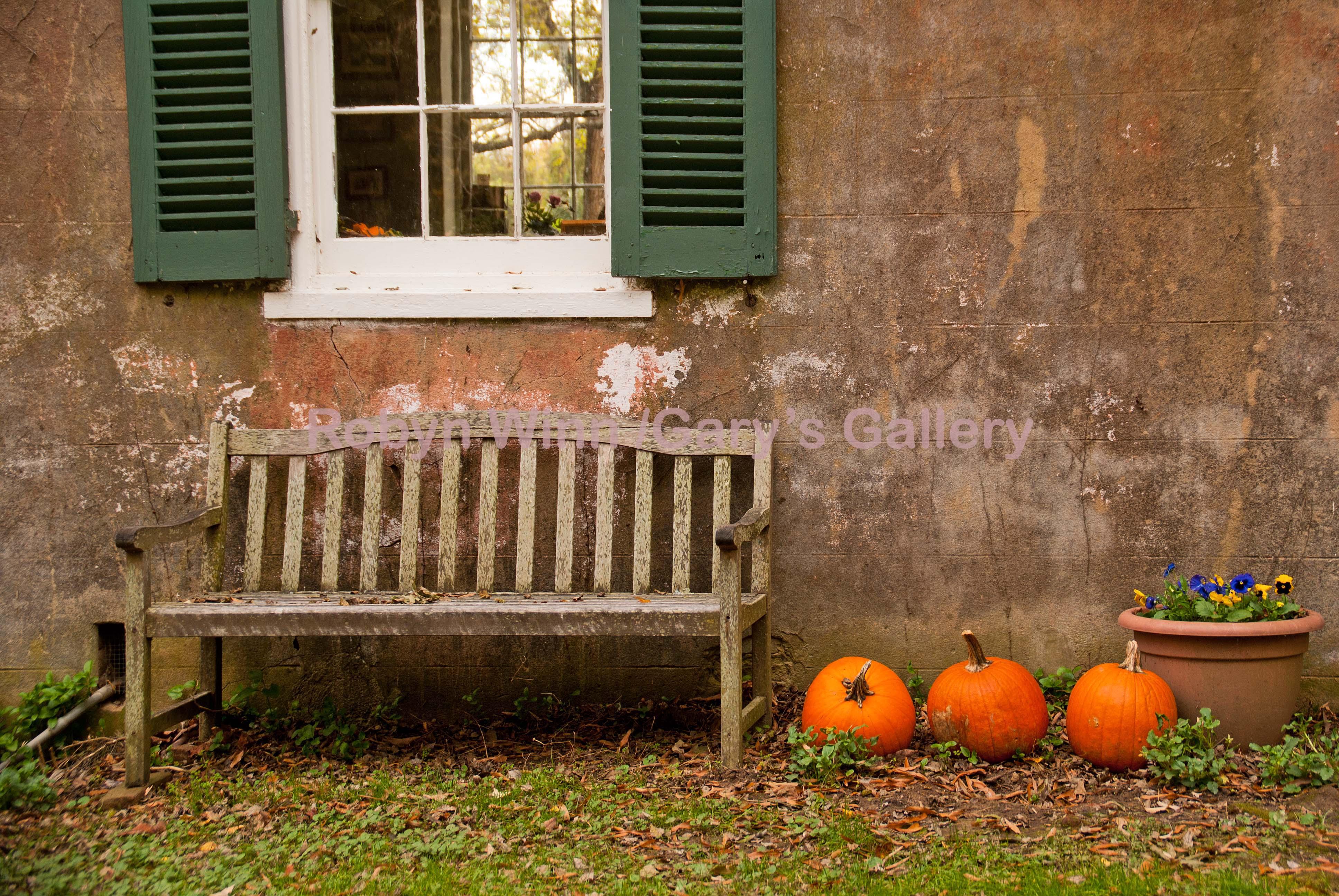 Bench & Pumpkins