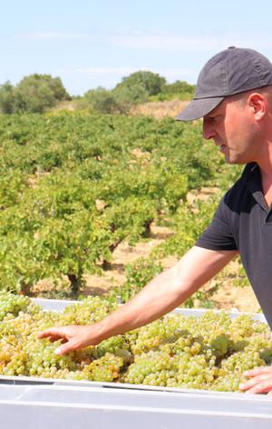 Baptiste Grangeon, la 3ème génération de vigneron au domaine