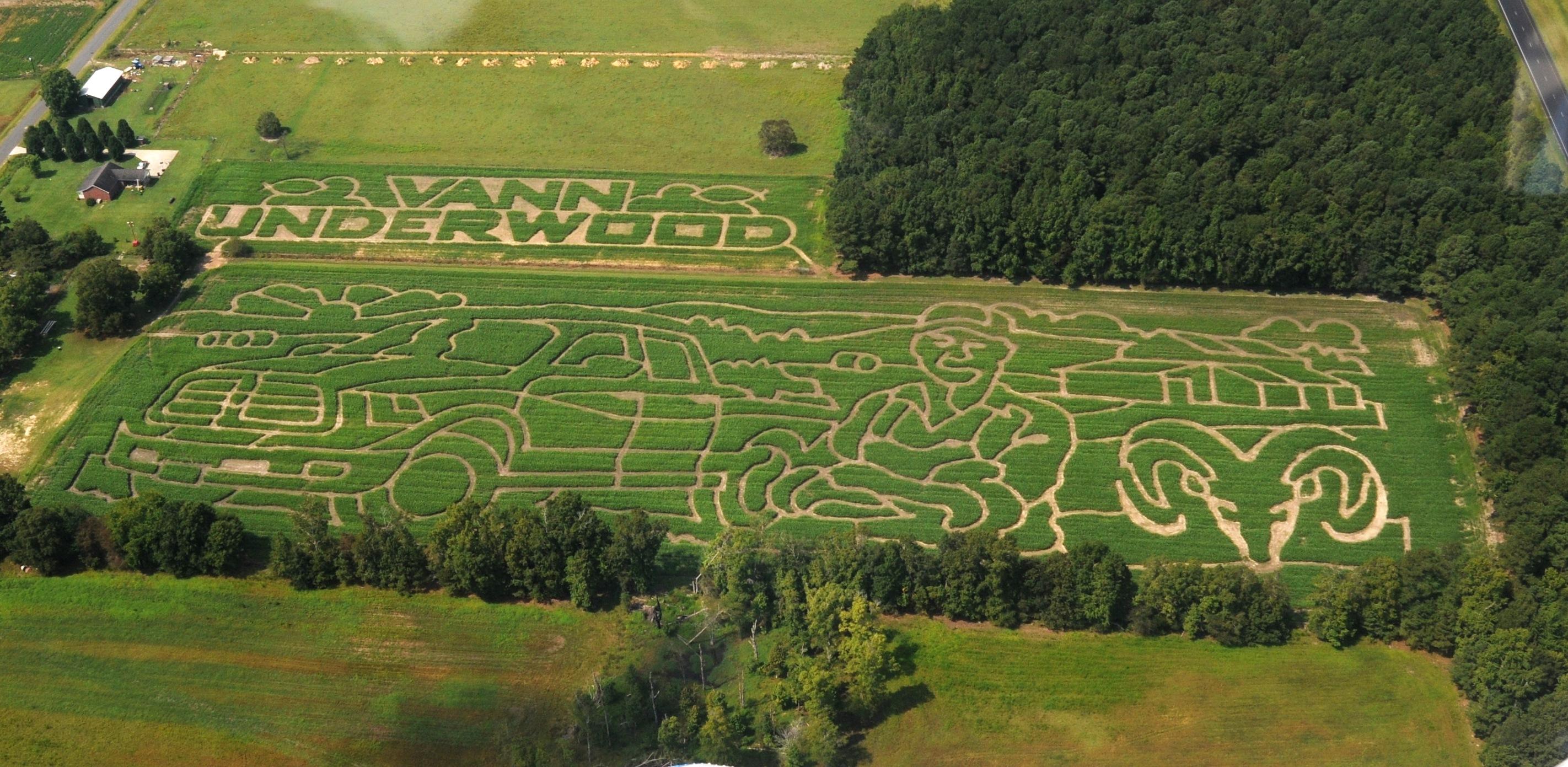 2013 Aerial Shot of Maze