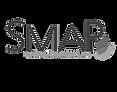 SMAP.png