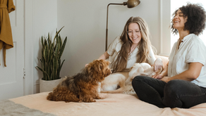 The Impact of Pets on Mental Health and Work Productivity