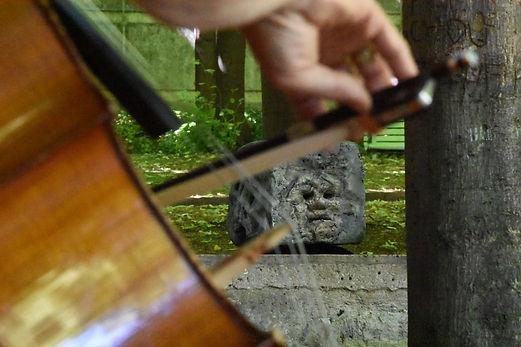Masque à travers cello.JPG