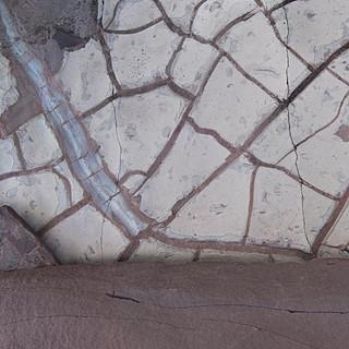 Mosaic I, Union Bay