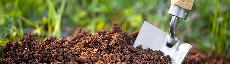 organic-soil-for-growing.jpg