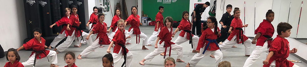 A group of children performing in martial arts uniforms