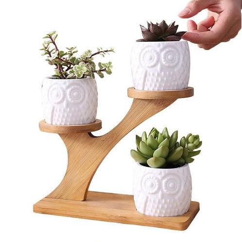 3Pcs/Set Ceramic Owl Garden Flower Pots Modern Decorative Nursery Succulent Plan