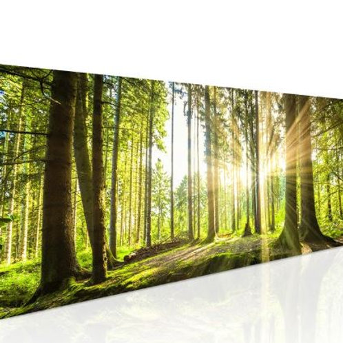 Natural Fresh Sunshine Canvas Painting Green Tree Poster Forest Landscape Wall A