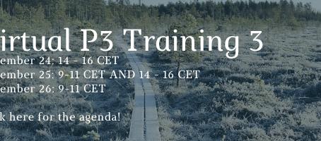 P3 Training 3 virtually
