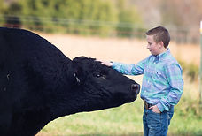 Petting Walter the Bull.jpg