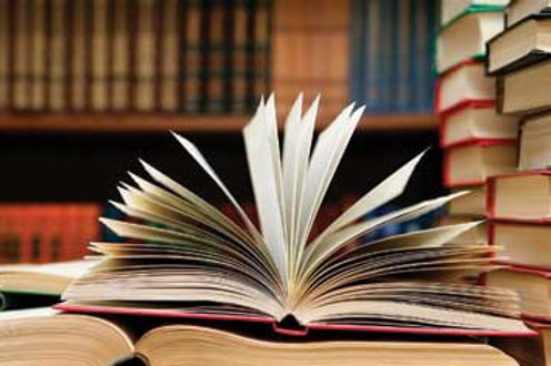 High School Writing/Novel Study