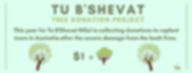 Copy of Tu B'shevat Flyer.png