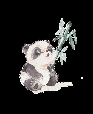 clean panda.png