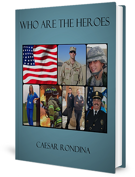 Book Cover Who Are The Heroes