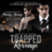 Trapped In Revenge audiobook-1 smaller.j