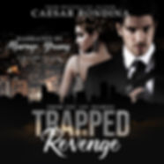 Trapped In Revenge audiobook-1 smaller.j