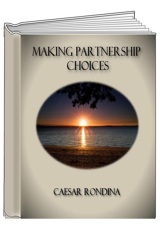 Website Book Cover3