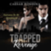 Trapped In Revenge audiobook-2.jpg