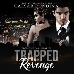 Trapped In Revenge audiobook-2.jpg