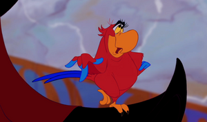 Iago from Aladdin