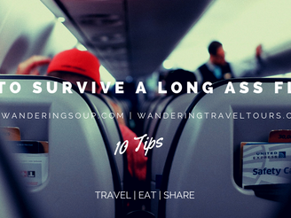 How to Survive a Long Ass Flight | Wandering Travel Tours
