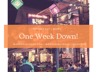 One week down, months to go | Wandering Soup