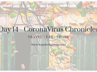 Day 14 - CoronaVirus Chronicles | Wandering Soup