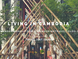 Living in Cambodia | Wandering Soup