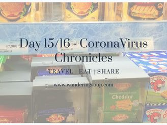 Day 15 & 16 Corona Chronicles | Wandering Soup