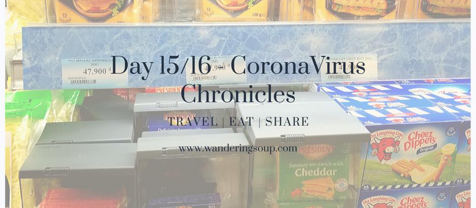 Day 15 & 16 Corona Chronicles | Wandering Soup