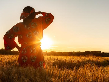 Jewels in the Field: A Modern Parable