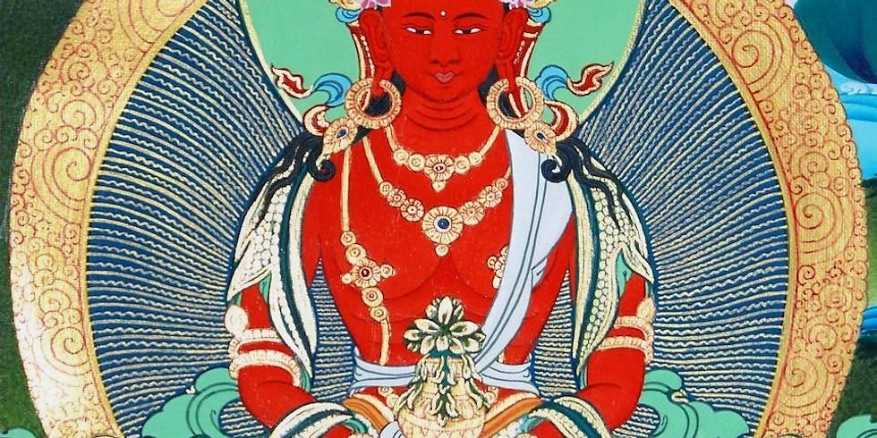 Iniciación, meditación y enseñanzas Amitayus