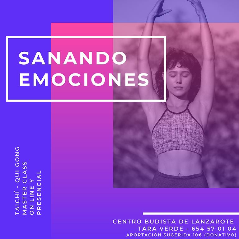 SANANDO EMOCIONES