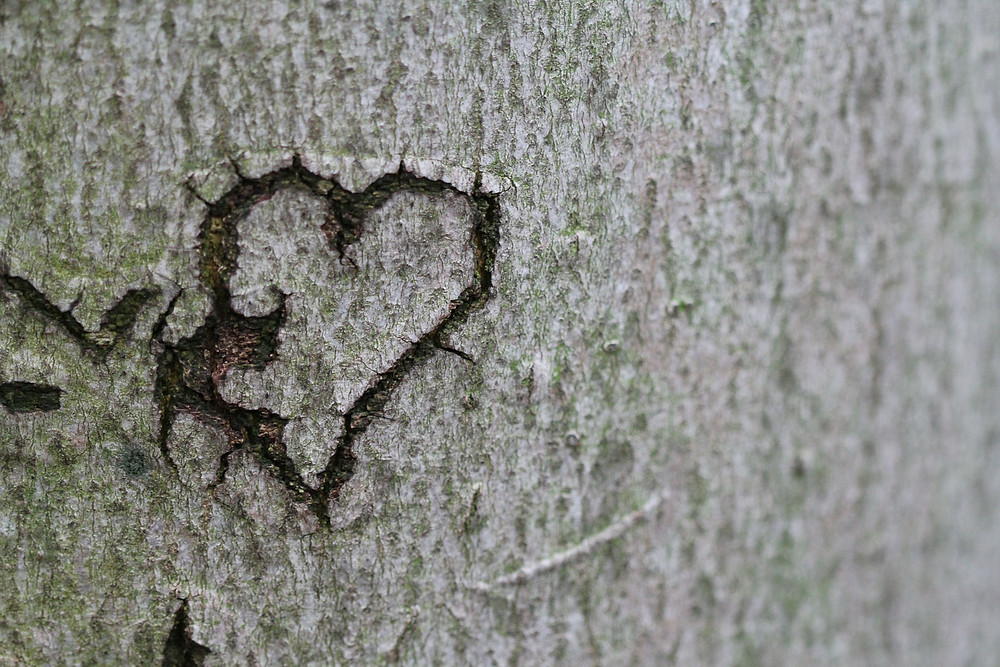 Vier wichtige Dinge, die es in Beziehungen zu beachten gilt, damit sie gelingen